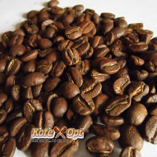 Arabica plant for sale
